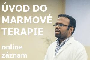Úvod do marmové terapieONLINE záznam